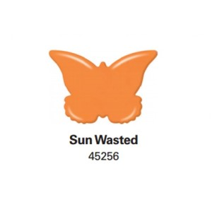 sun wasted